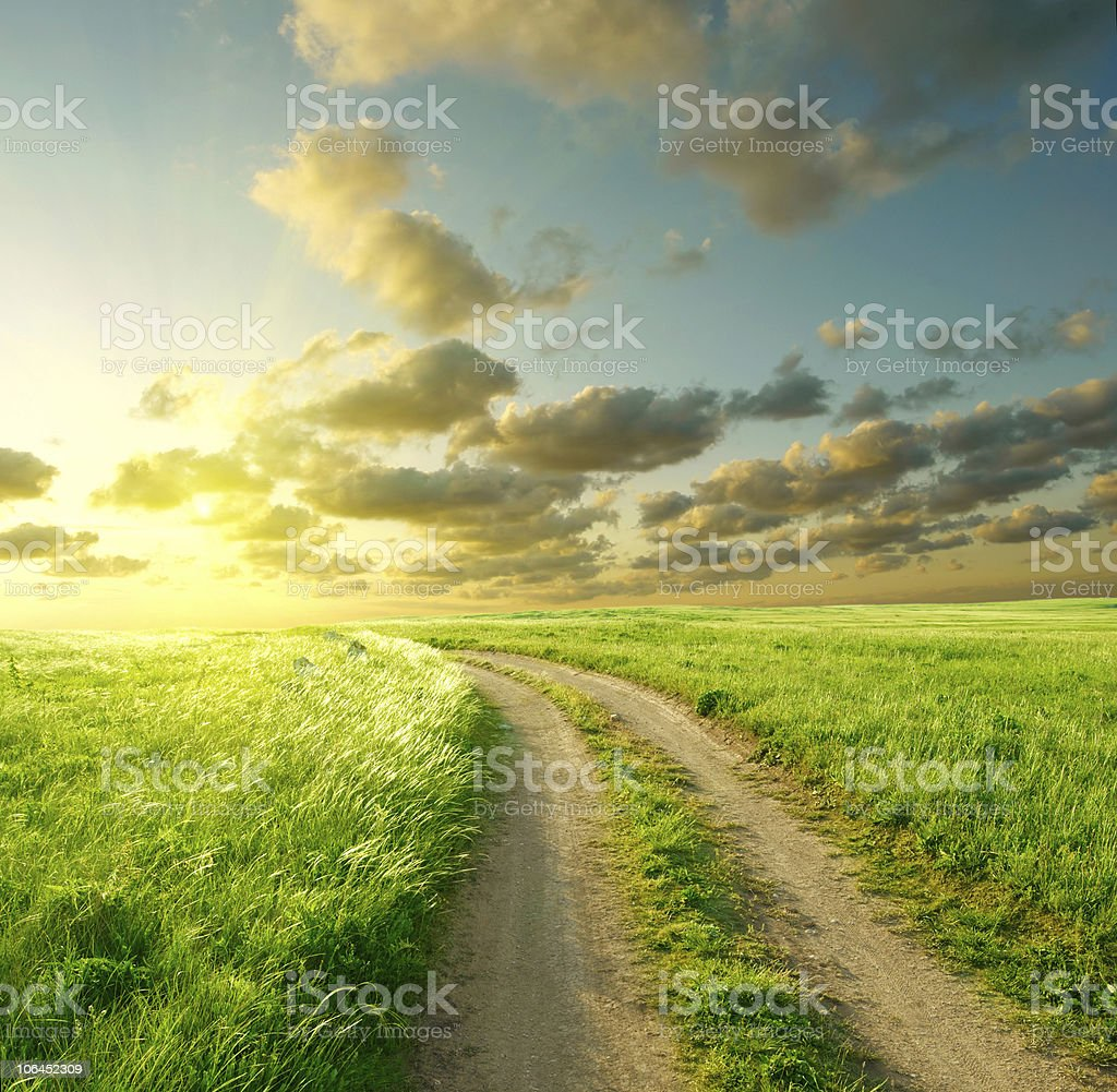 Unpaved road going through grass field in a sunny day royalty-free stock photo