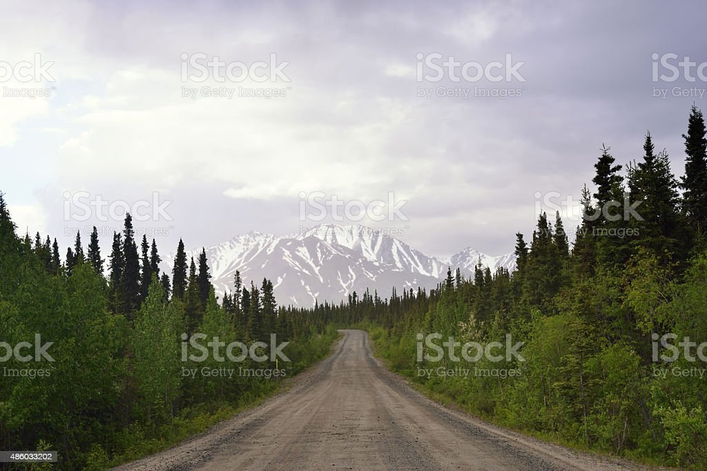 Unpaved Road of Denali Highway stock photo