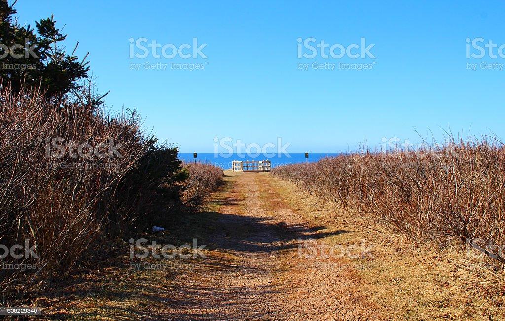 Unpaved road to horizon stock photo
