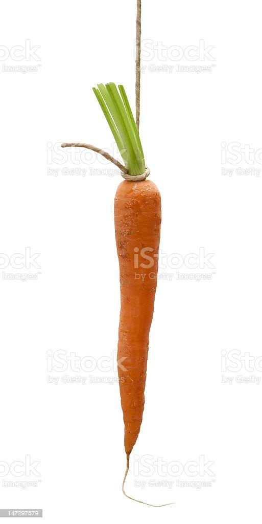 Unreachable goal - hanging carrot stock photo