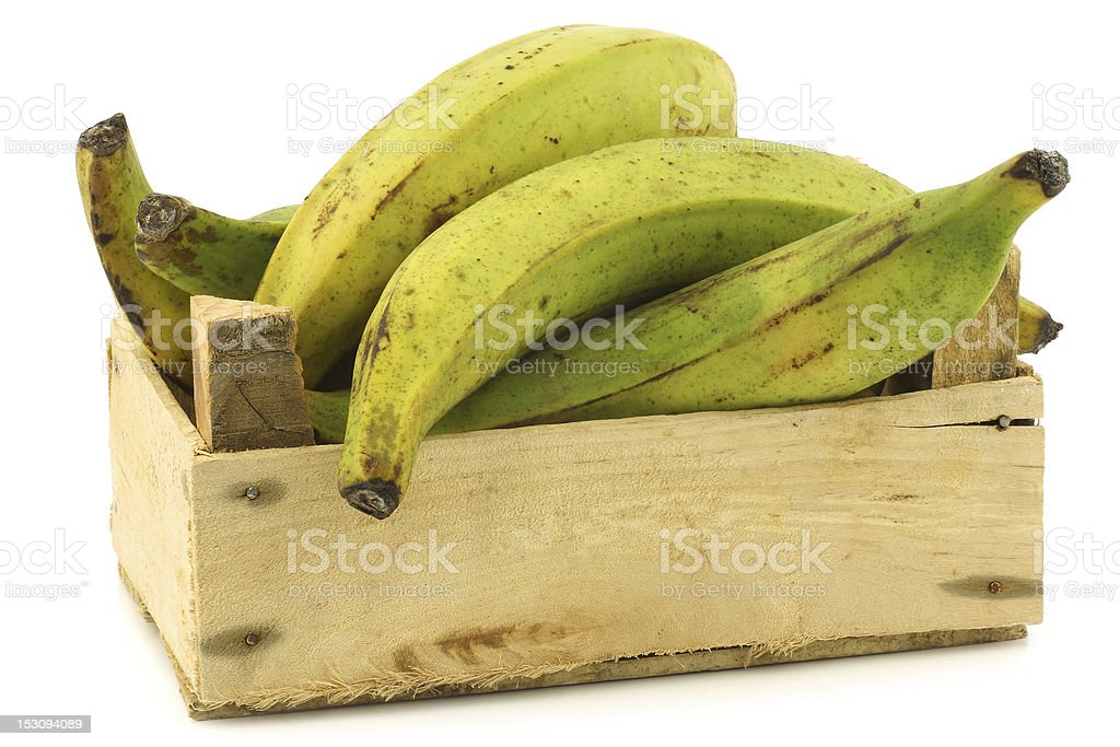unripe baking bananas (plantain bananas) in a wooden crate stock photo