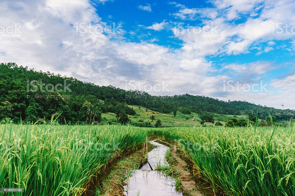 unseen thailand at Mae la noi ,Mea Hong Son stock photo