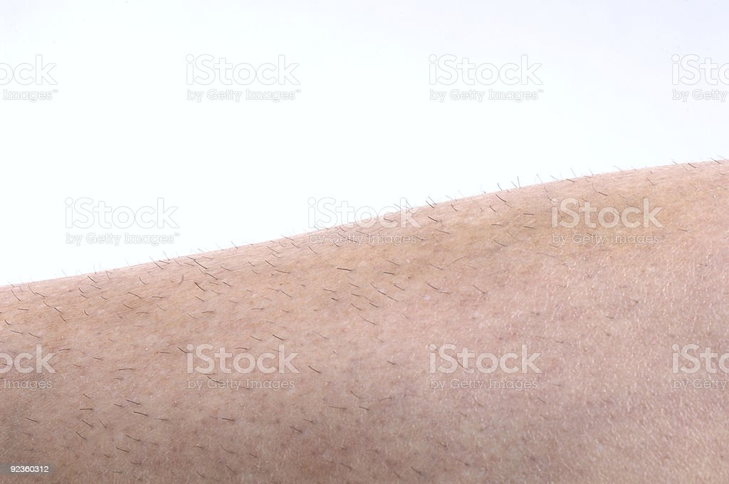 Unshaved Leg Hair 2 royalty-free stock photo