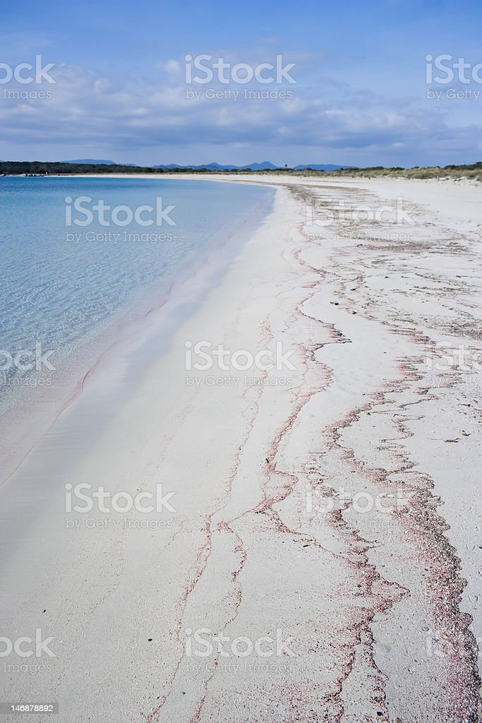 Unspoiled beach. royalty-free stock photo