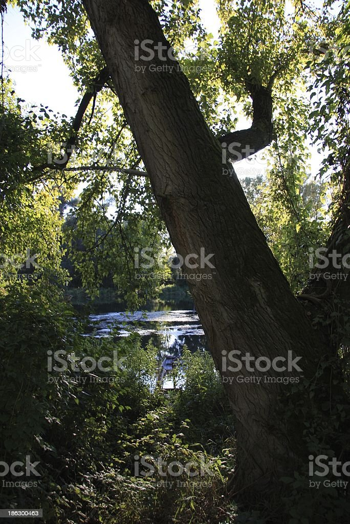 unspoiled countryside stock photo
