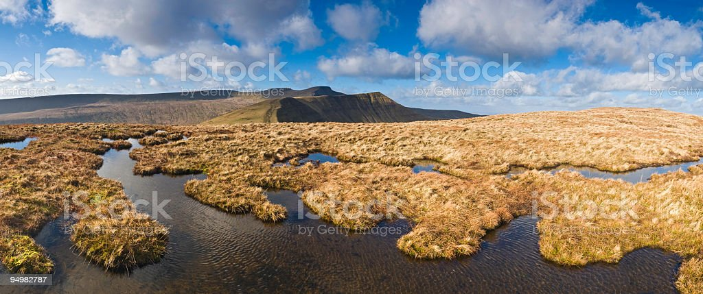 Unspoilt golden wilderness stock photo
