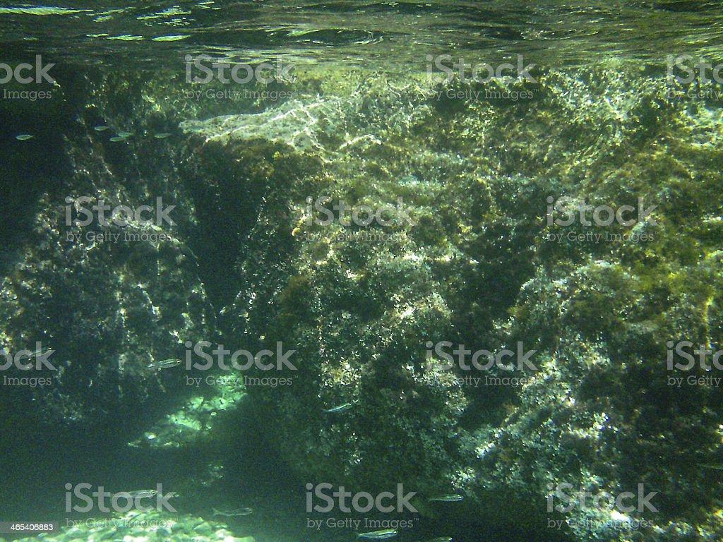 Unterwasserlandschaft, Veli Rat, Kroatien, Dalmatien stock photo