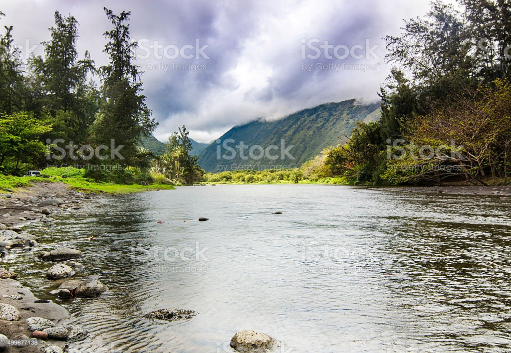 Untouched nature by Waipio Valley, Hawaii stock photo