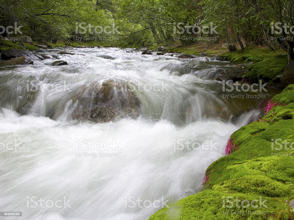 Untouched Tranquility stock photo