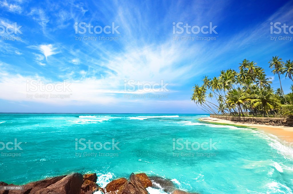 Untouched tropical beach in Sri Lanka stock photo