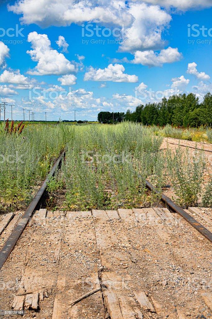 Unused Railway Tracks Overgrown With Weeds stock photo