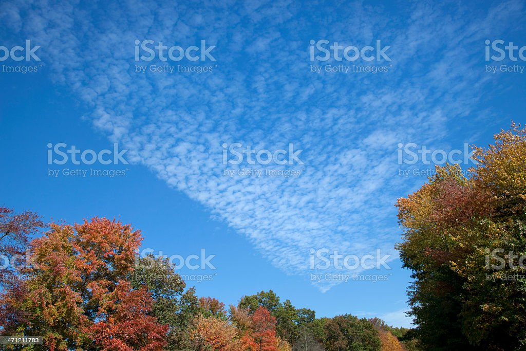 Unusual Cirrocumulus Clouds in Autumn royalty-free stock photo