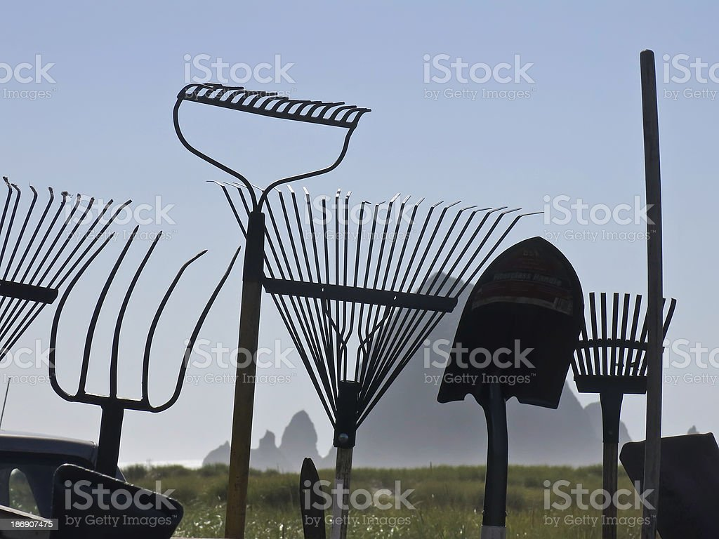 Unusual juxtaposition of gardening and geologic themes stock photo