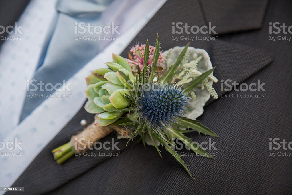Unusual thistle and Succulent Wedding Buttonhole stock photo