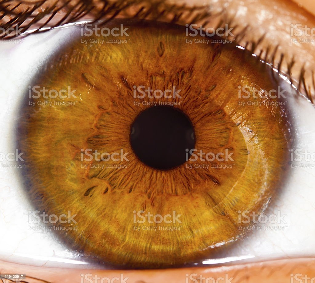 Up close photo of a brown eye's pupil stock photo