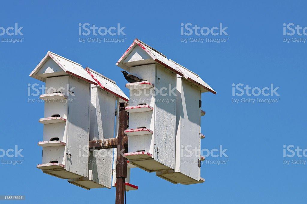 Up-close shot of bird houses stock photo