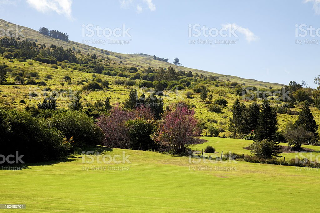 Upcountry Landscape stock photo