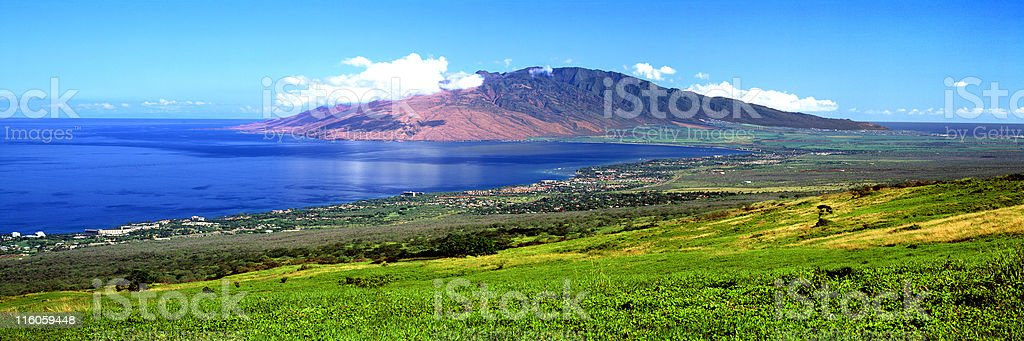 UpCountry Maui stock photo