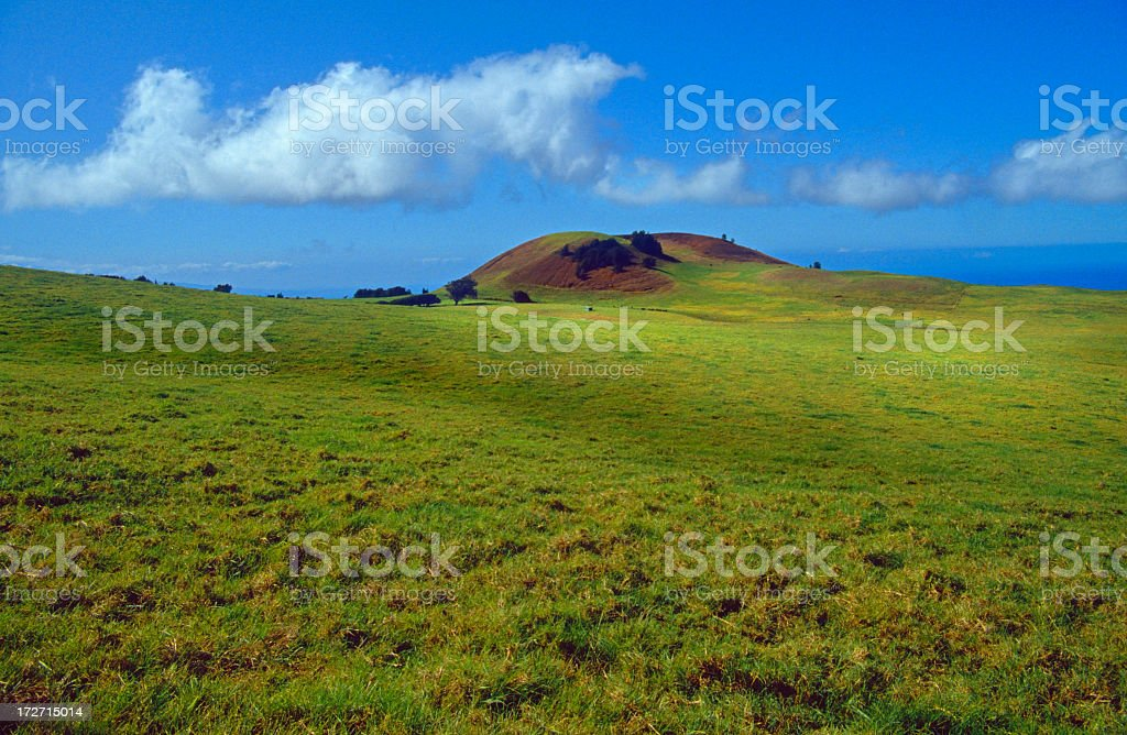 Upcountry Waimea Big Island Hawaii stock photo