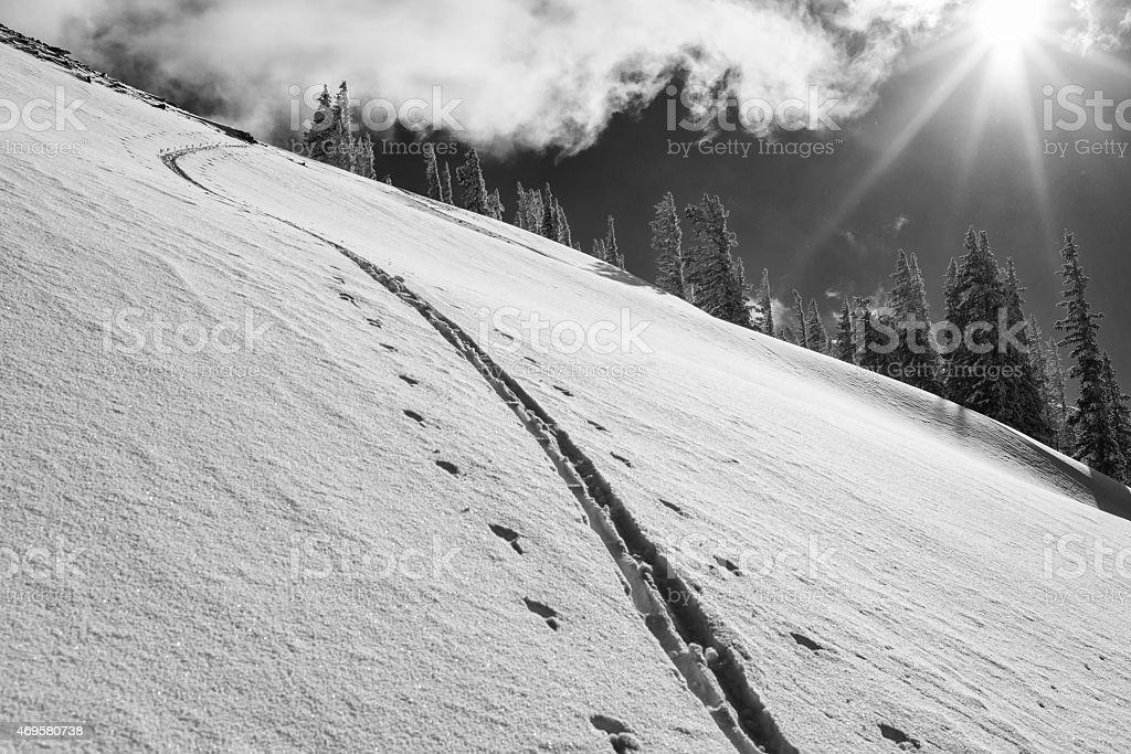 Uphill ski tracks in the Tetons stock photo