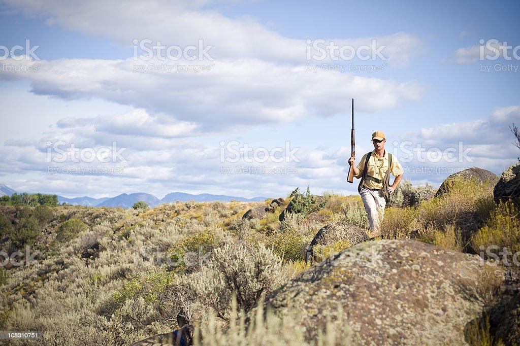 Upland Bird Hunter Man with Shotgun Upright Stalking Birds stock photo