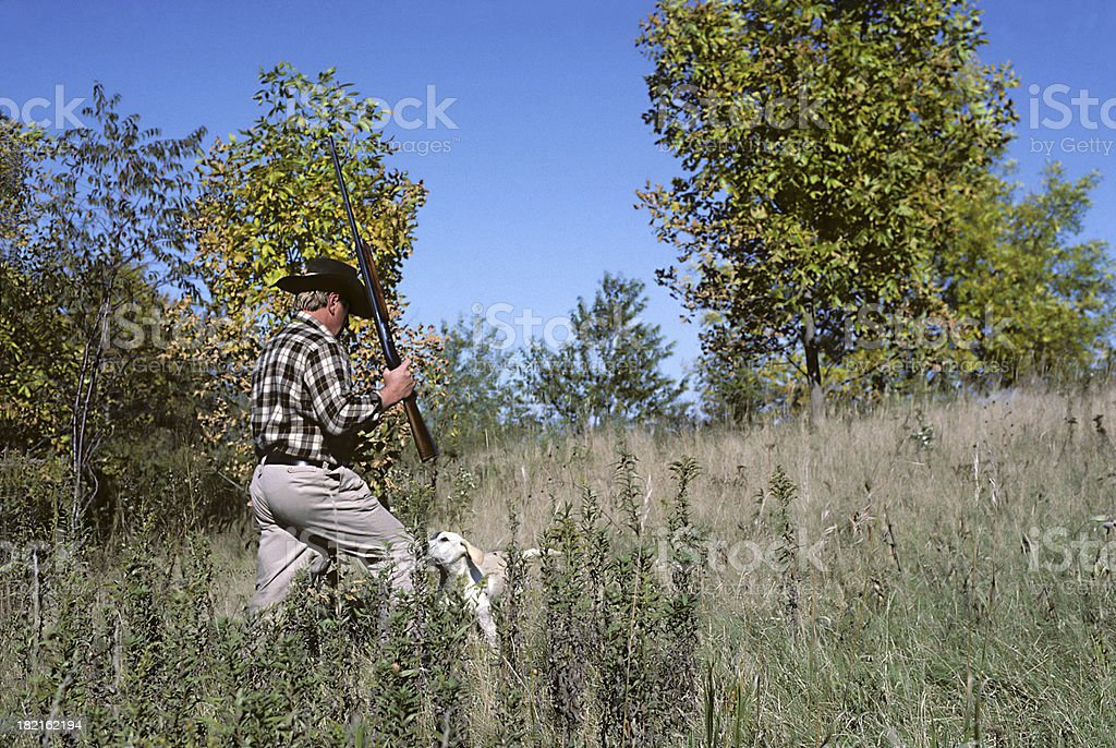 upland hunter in the field stock photo