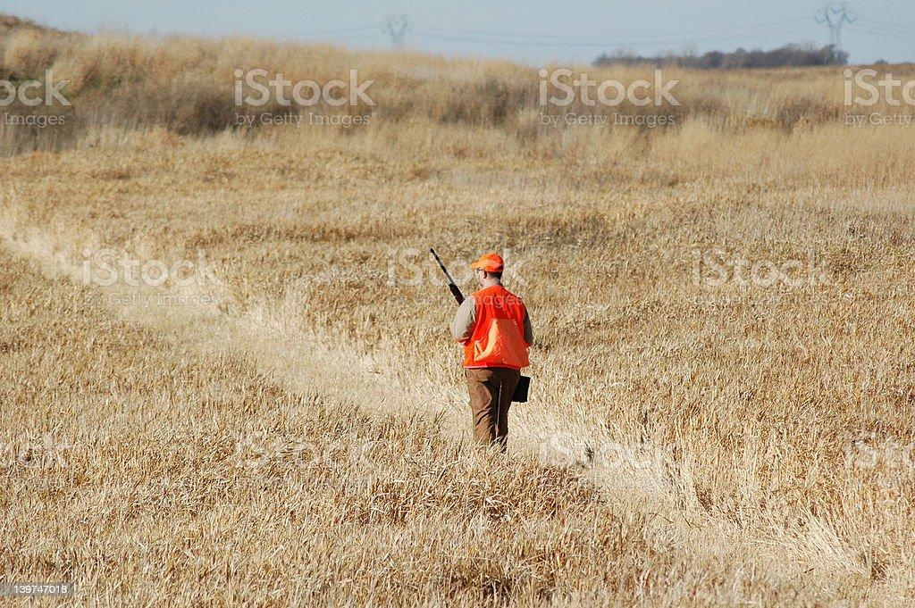 Upland Hunter stock photo