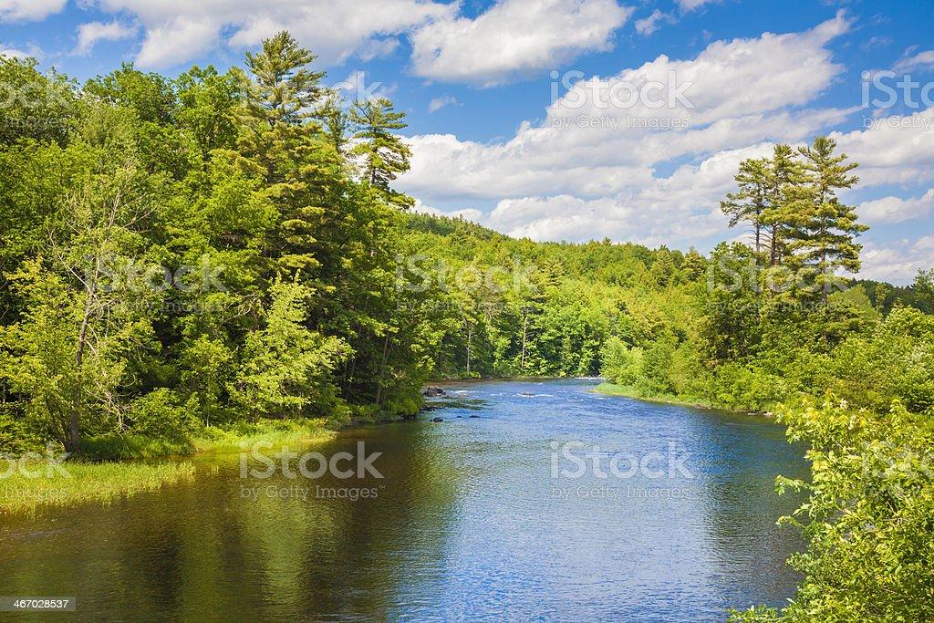 Upper Hudson River and trees Adirondack Park upstate New York stock photo