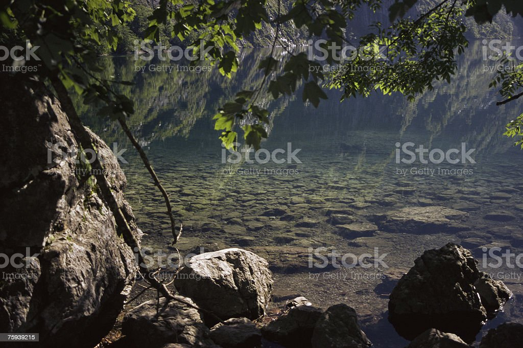 Upper lake royalty-free stock photo