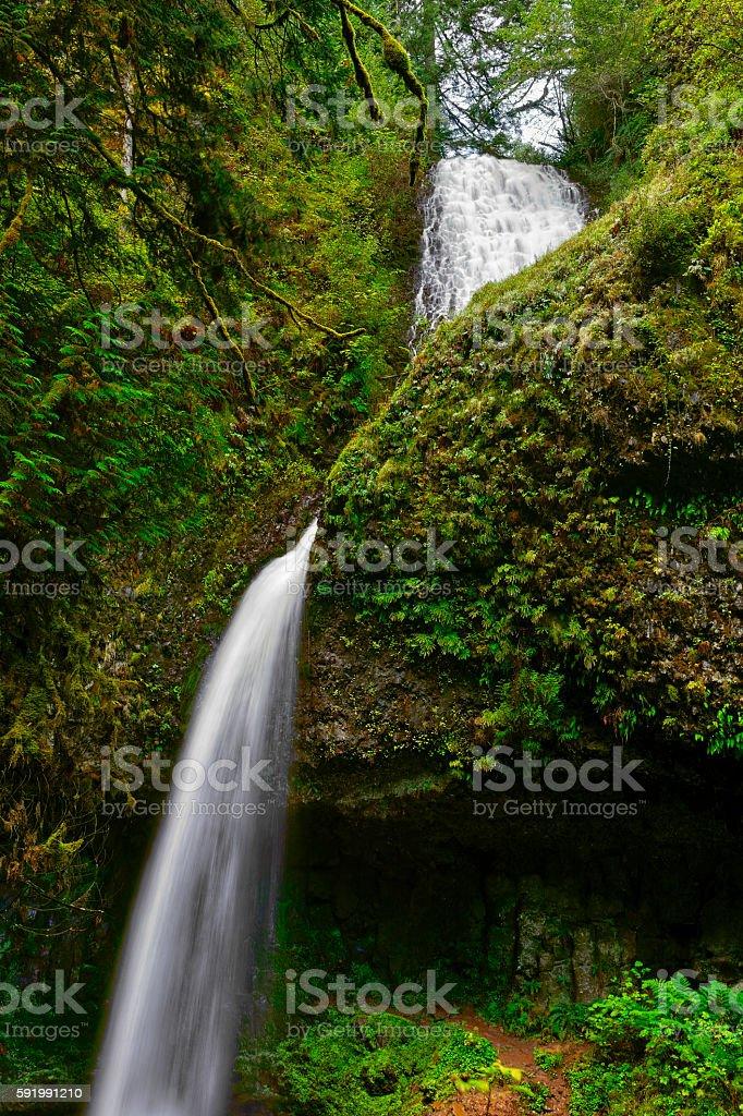 Upper Latourell Falls stock photo