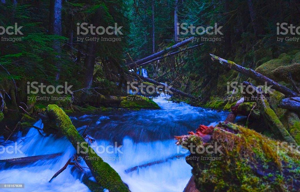 Upper Puzzle Creek Wild stock photo