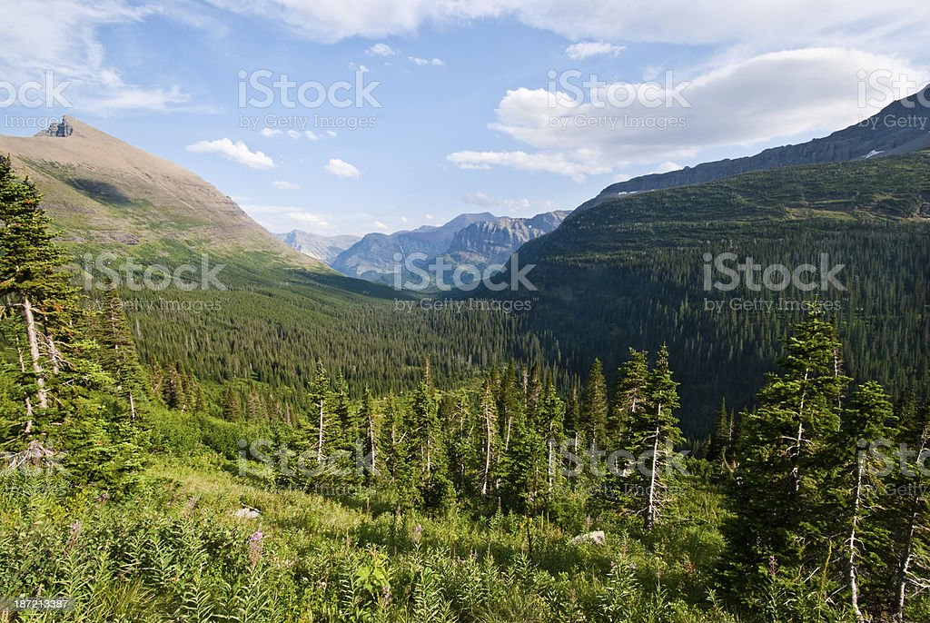 Upper Swiftcurrent Valley in the Evening royalty-free stock photo