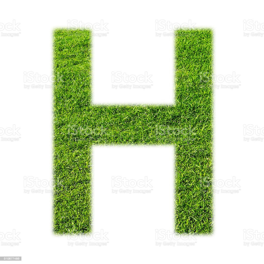 'H' uppercase alphabet made of grass texture, isolated on white stock photo