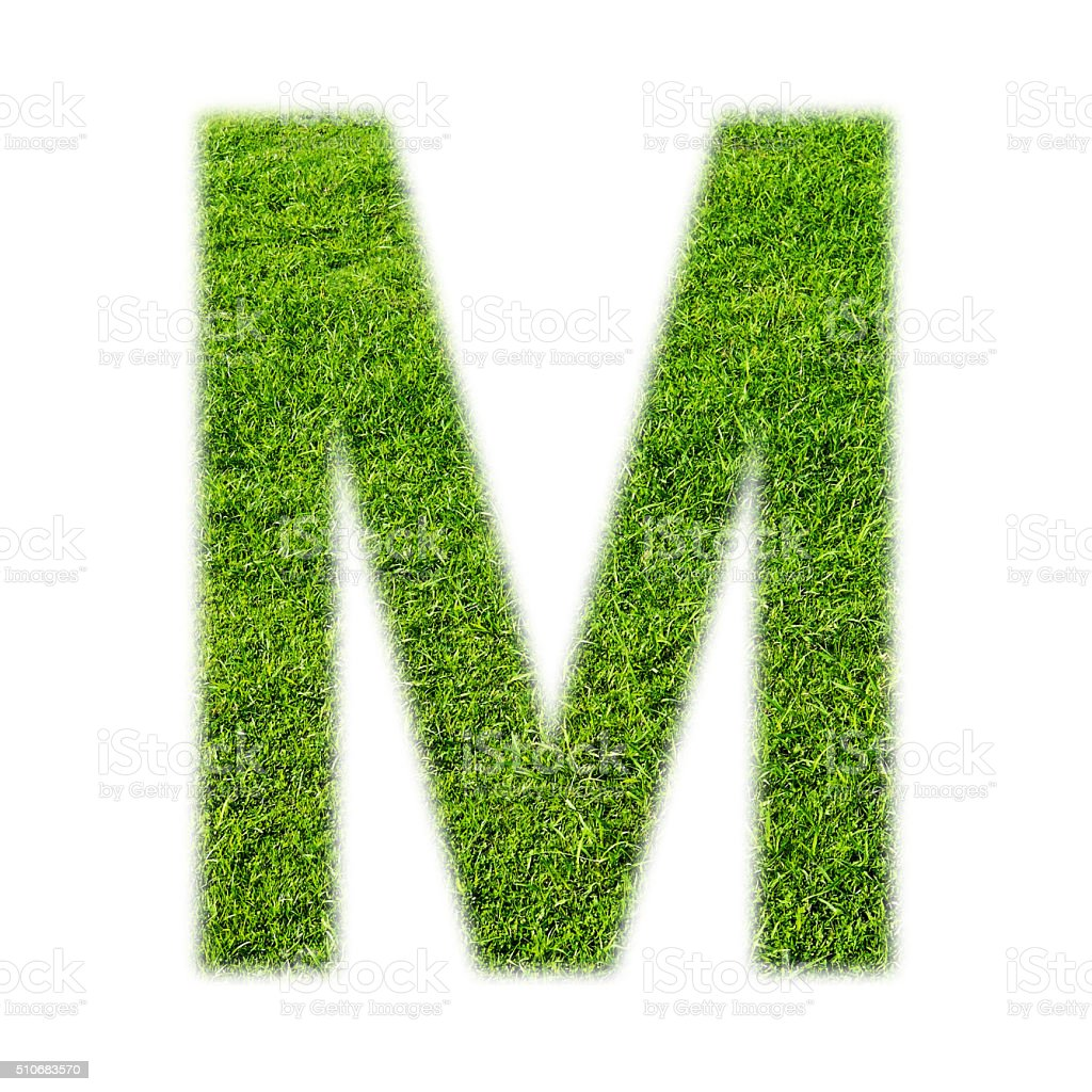 'M' uppercase alphabet made of grass texture, isolated on white stock photo