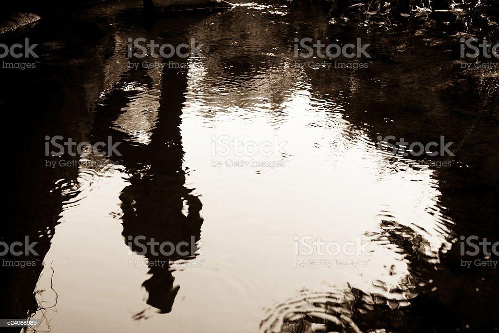 Upside down reflection stock photo