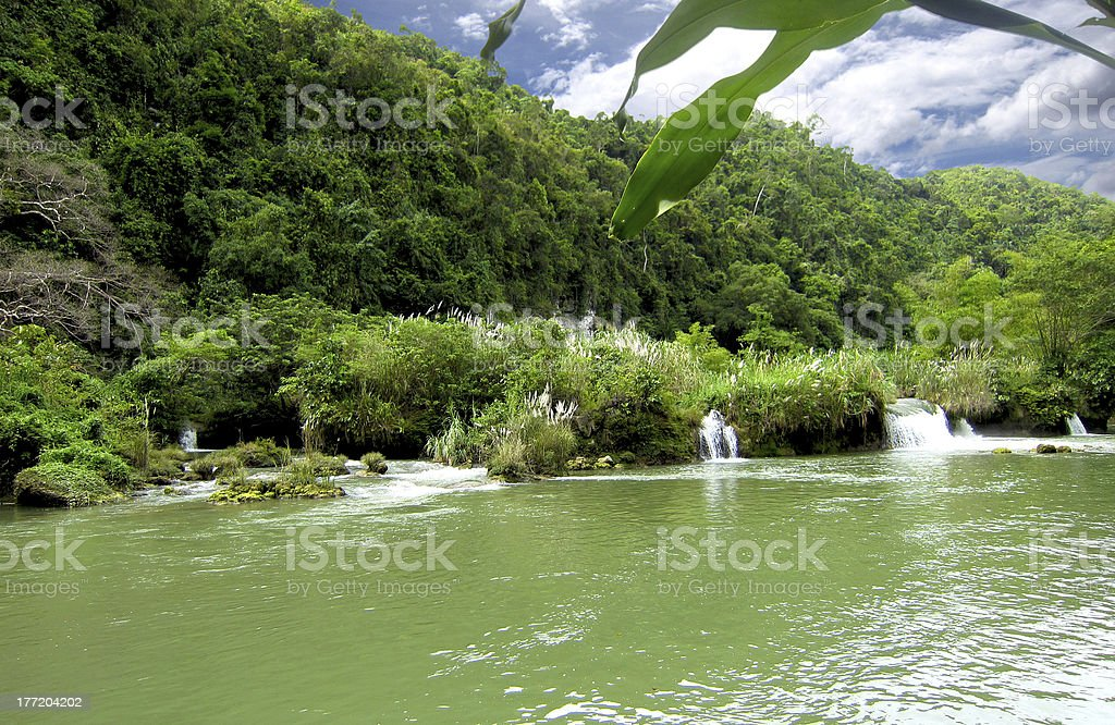 Upstream of Loboc River Landscape royalty-free stock photo