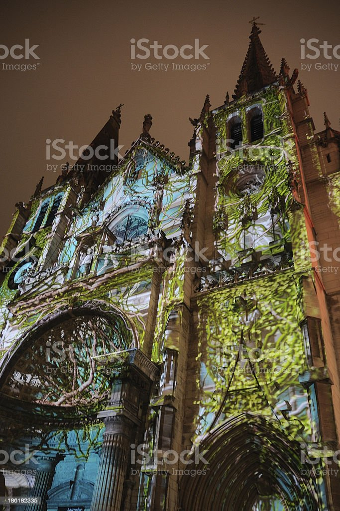 Upward view of a vine covered Fete des Lumieres in Lyon stock photo