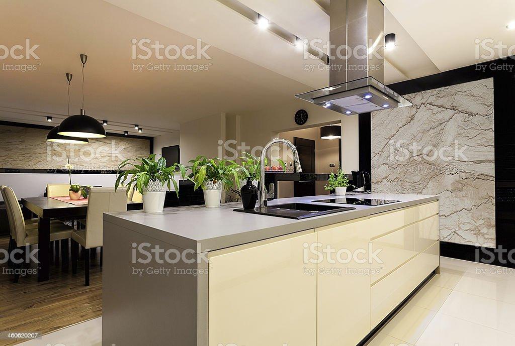 Urban apartment - kitchen stock photo
