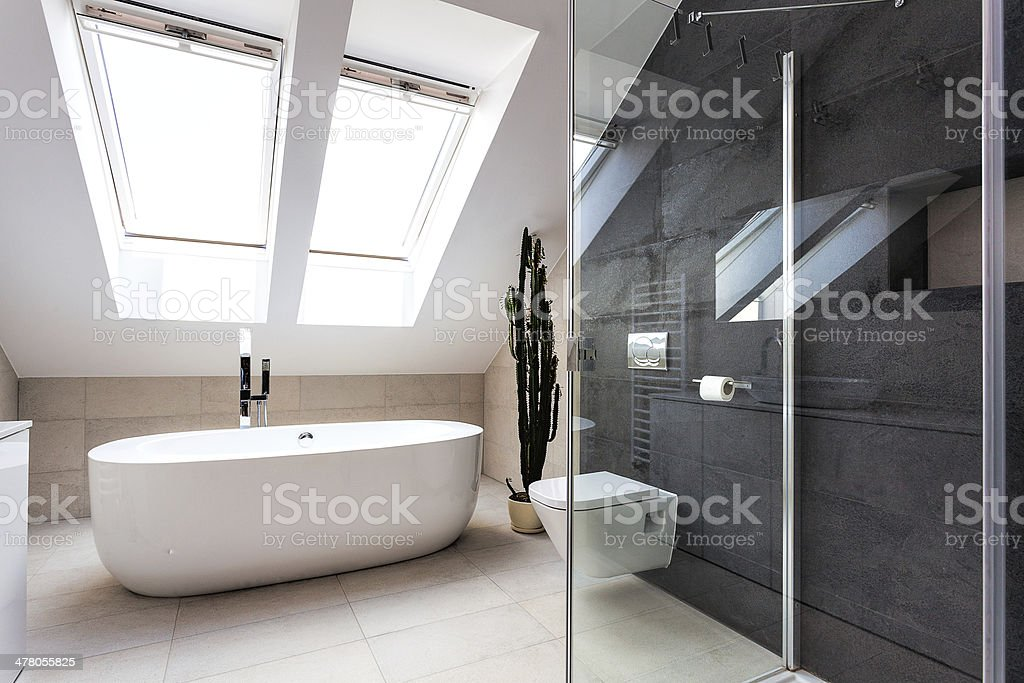 Urban apartment - shower and bath royalty-free stock photo
