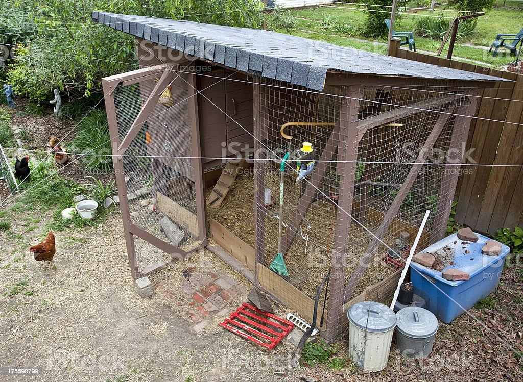 Urban Chicken Coop royalty-free stock photo