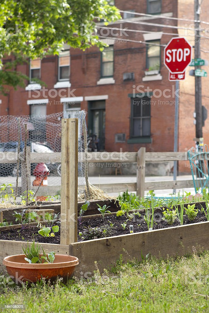 Urban community garden situated in a city royalty-free stock photo