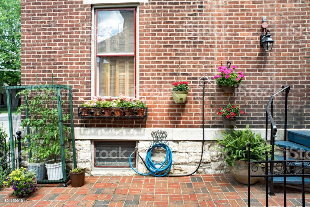 Urban red brick house court yard with squirrel-proof caged tomatoes,...
