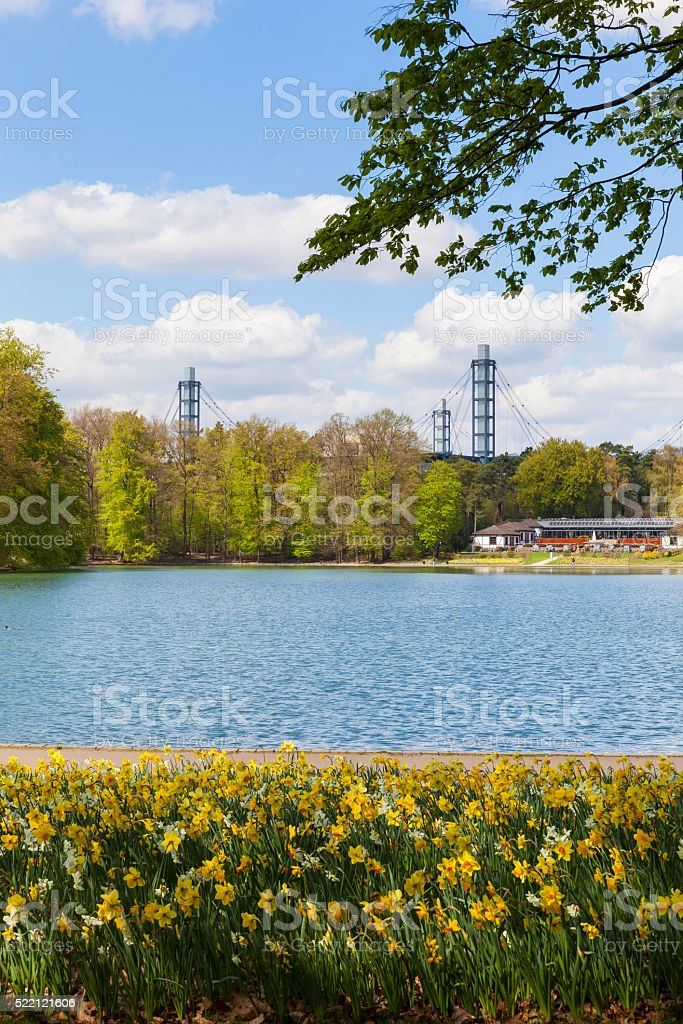 Urban forest of Cologne, Germany stock photo