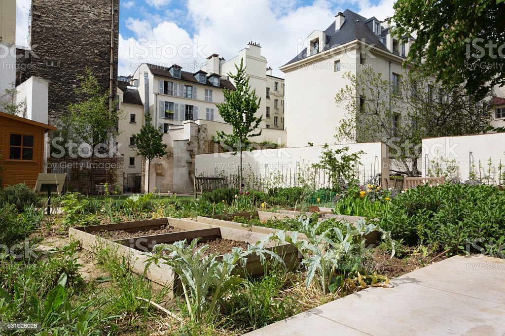 Urban gardening in Paris, France stock photo