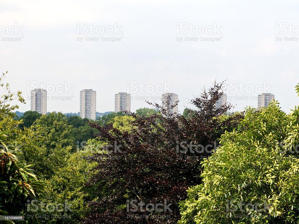 urban Jungle royalty-free stock photo
