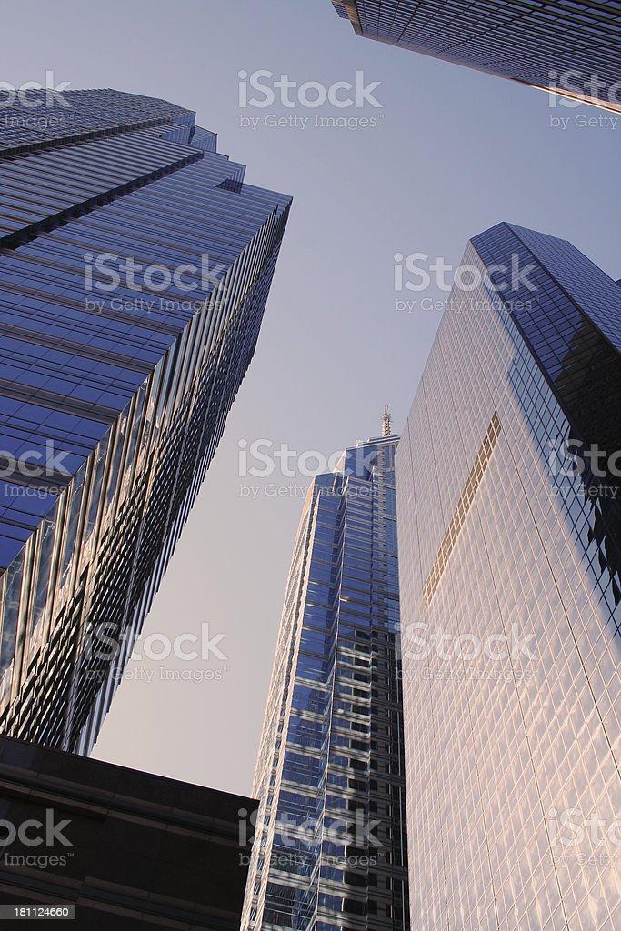 Urban jungles royalty-free stock photo