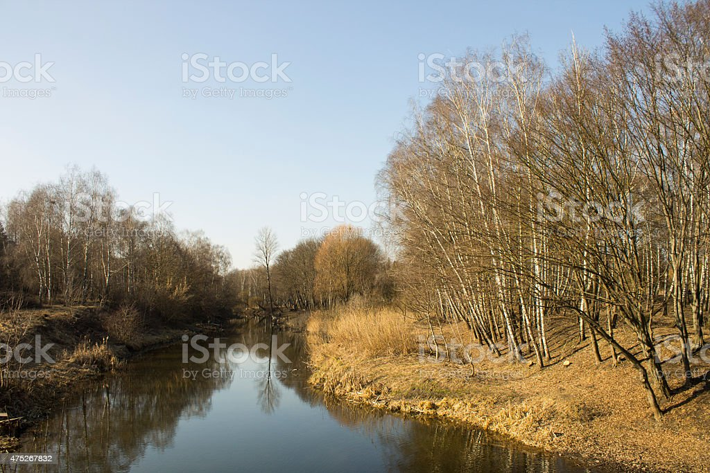 Urban nature in Ternopil, Ukraine stock photo