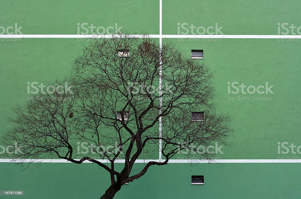 Urban Nature royalty-free stock photo