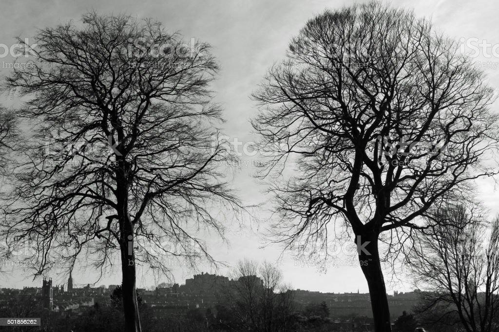 Urban Park, Edinburgh, Scotland stock photo