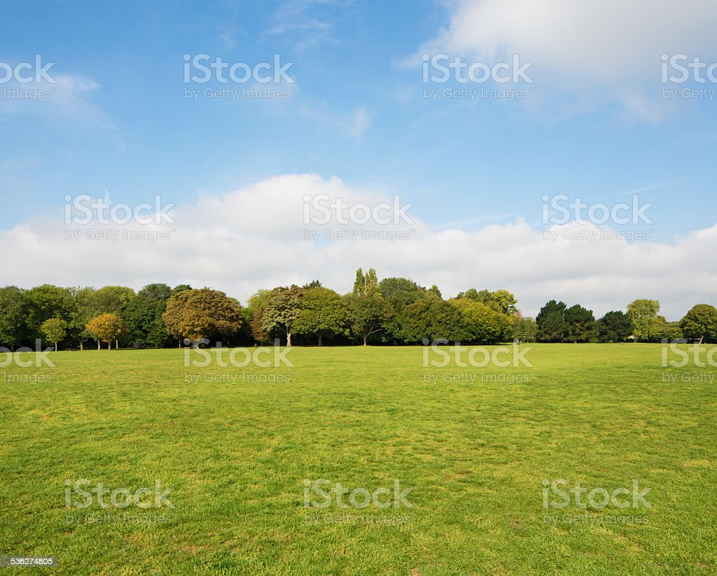 Urban park grass lawn area with partly clouded sky background stock photo